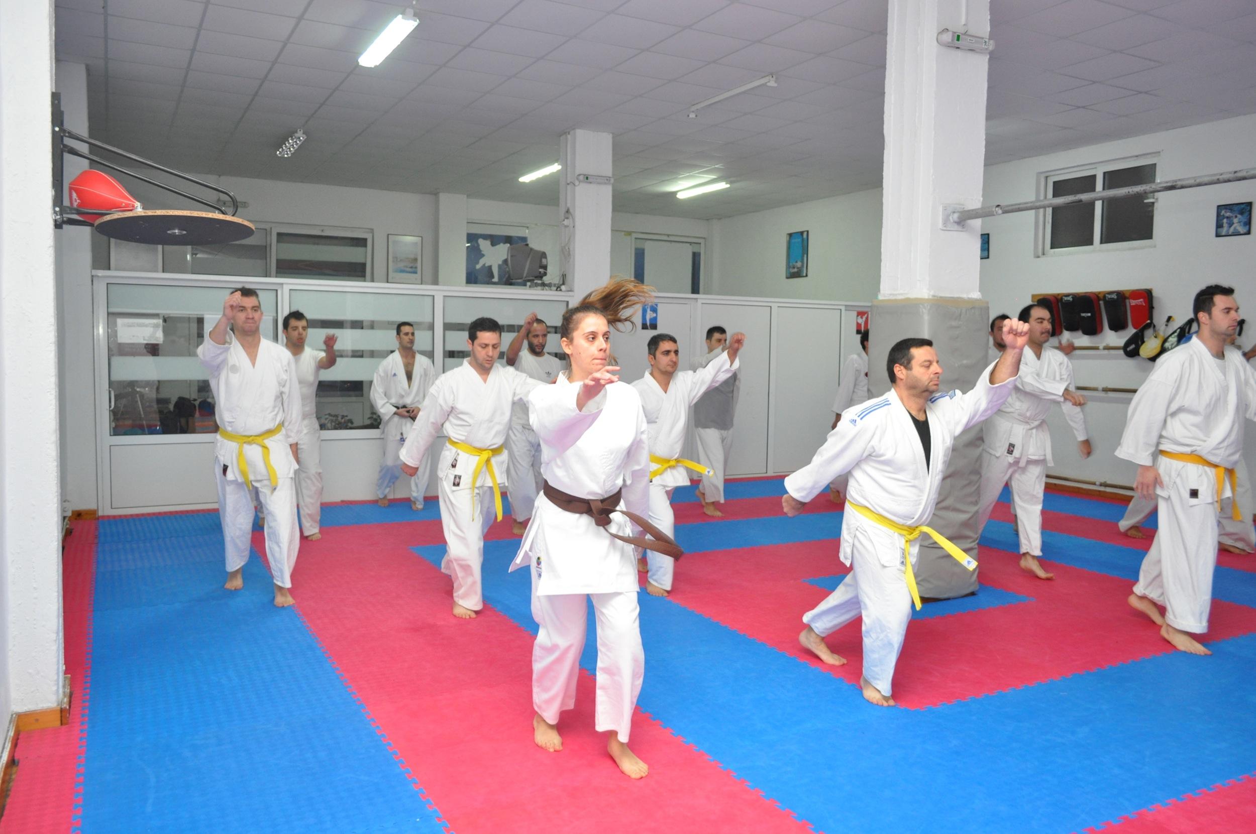 Shotokan Seminar in Alexandroupoli, Greece